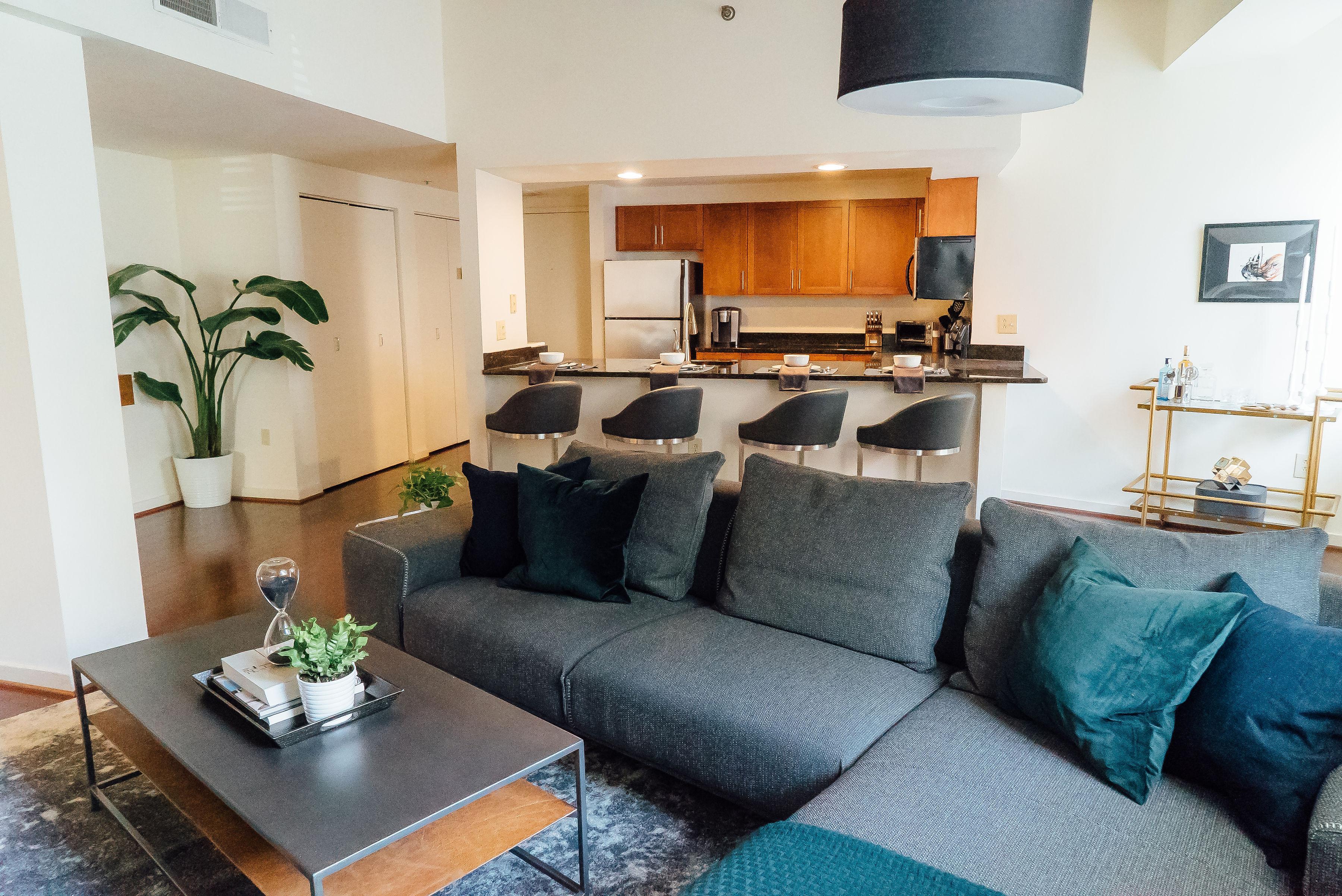 Interior Designed living room in a Center City apartment